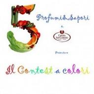 I 5 colorati finalisti