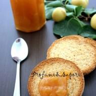 Confettura di albicocche e vaniglia (metodo C. Ferber)